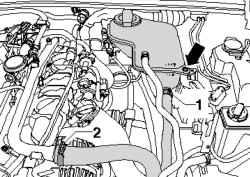Водяные шланги и крепление расширительного бачка системы охлаждения