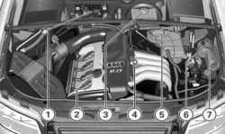 Подкапотное пространство 4-цилиндрового бензинового двигателя