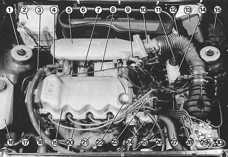 Заменить Термостат На Форд Escort 1 4