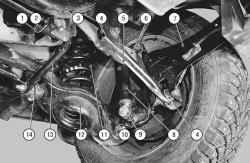Расположение элементов задней подвески на автомобиле