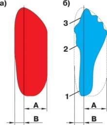 Примерная форма диаграмм при проверке амортизаторных стоек и амортизаторов на стенде