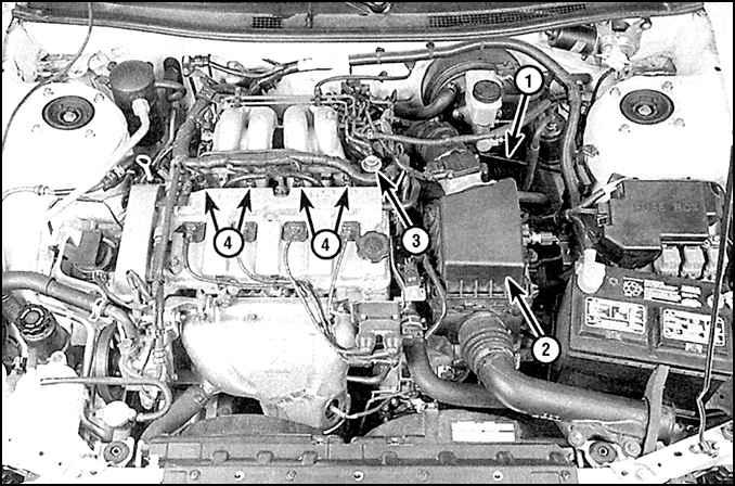 Система питания (двигатели 2,0.