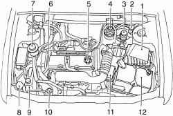 Подкапотное пространство автомобилей с дизельным двигателем