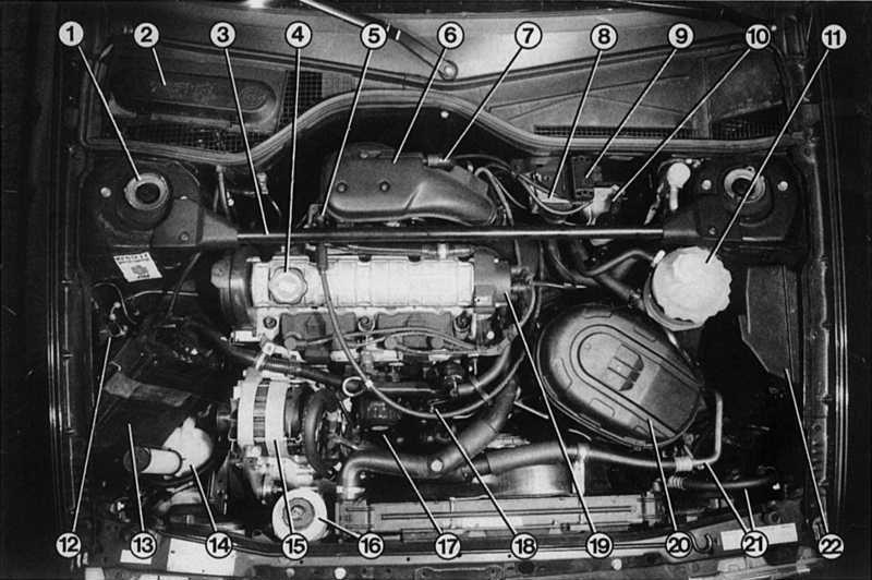 Бензиновые двигатели Renault 19.