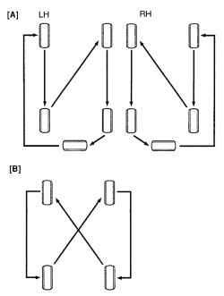 Схема перестановки шин