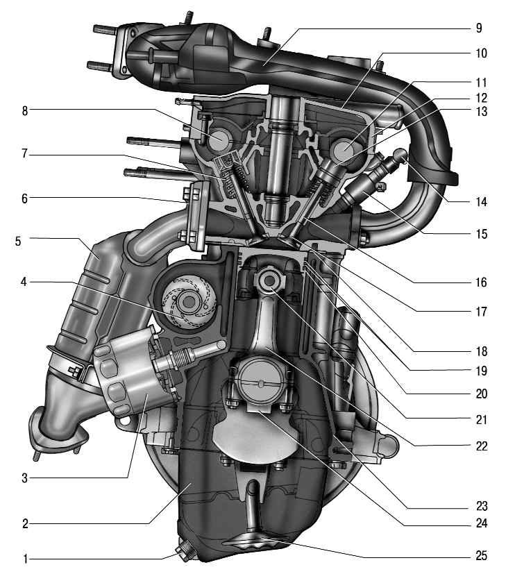 поперечный разрез двигателя ваз 21126.